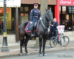 Do you have police on horseback in your neck of the woods?