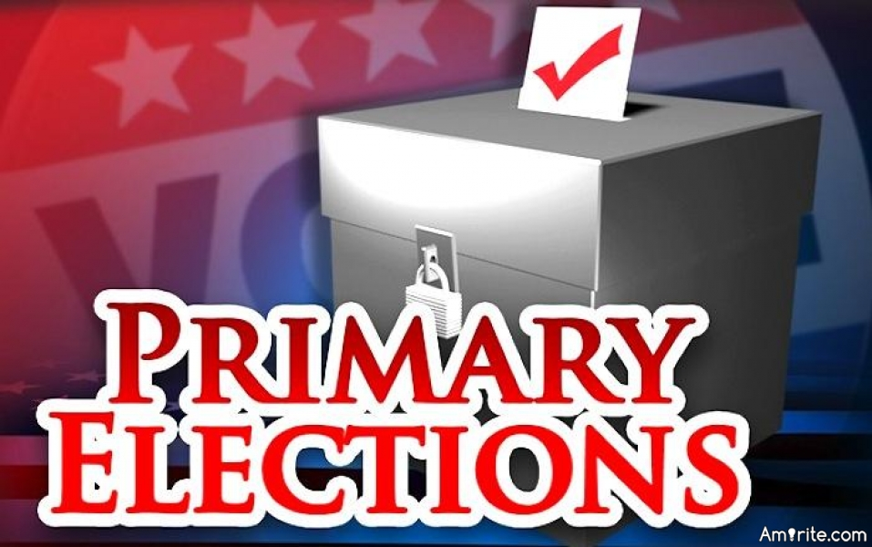 Do you vote in the primary elections?