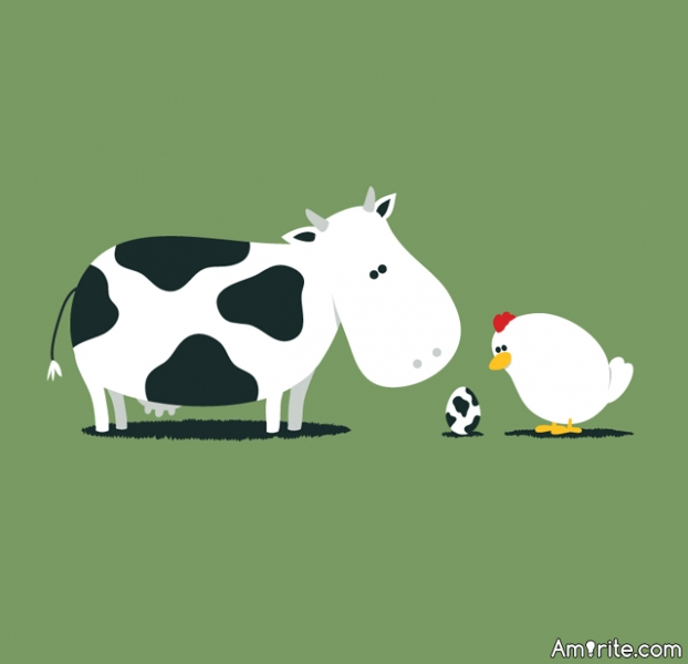 Do you like Chickens and Cows ?