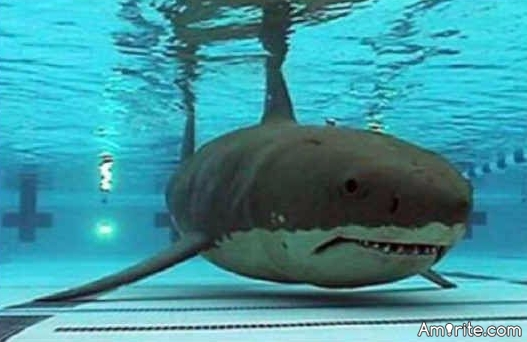 What was your irrational childhood fear?