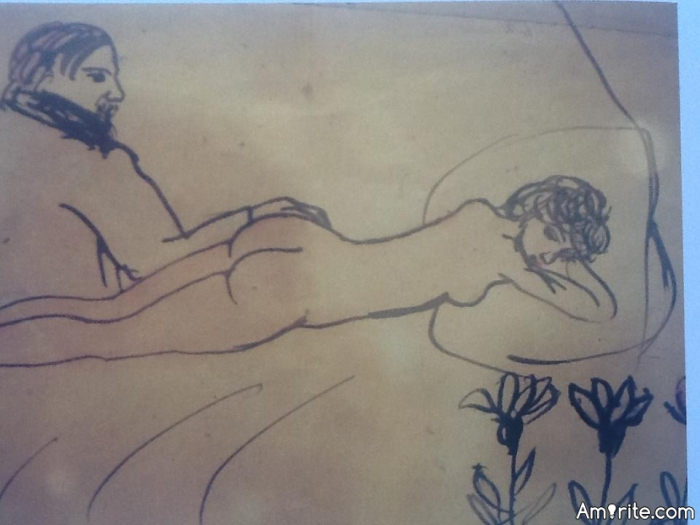 <b>Do     line drawings of s.e.x acts give   pictures an artistic focus?</b> <em>So, they become acceptable, then.</em>
