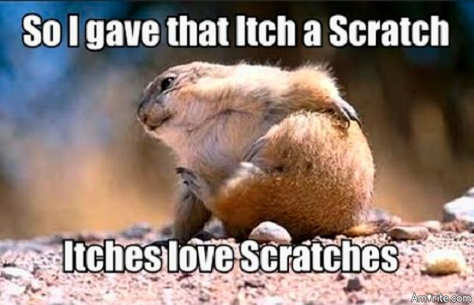 Have you ever scratched an itch too much because it felt so good?