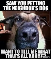 If Your Pet Could Talk To You, What Would They Tell You Is The One Thing That You Do More Than Anything Else That Bugs The Crap Out Of Them?