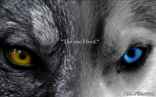 Credit this to chucktom for sparking a memory.  There is a battle of two wolves inside us all.  One is evil.  It is anger, jealousy, greed, resentment, lies, inferiority, and ego.  The other is good.  It is joy, peace, live, hope, humility, kindness, empathy and truth.  The wolf that wins?  The one you feed.  Cherokee proverb