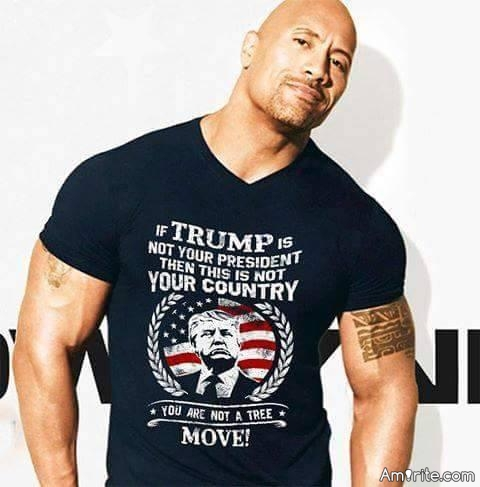 The Rock ... Rocks ... Relax!!!!! His just a supporter.