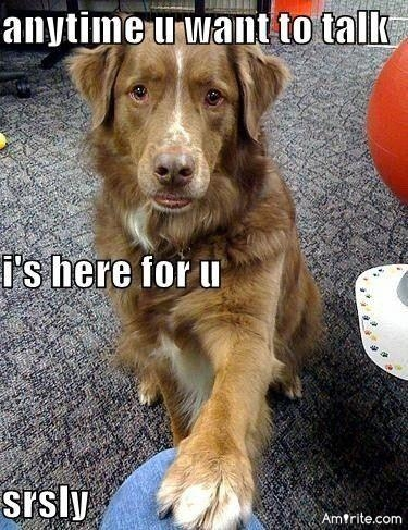 Do your four legged buddies talk to you?  If so, do you understand?