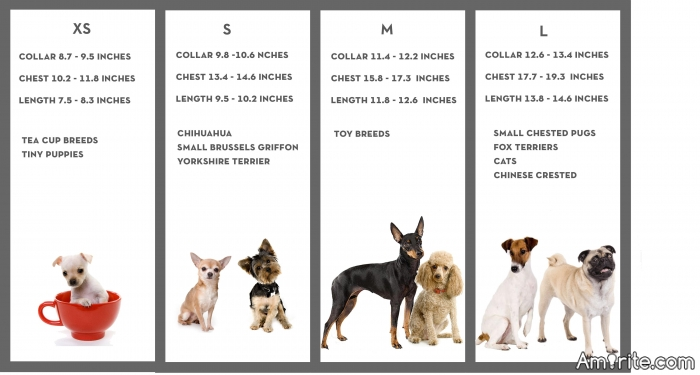We all love animals right...When it comes to dogs do you prefer XS,S, M, or L?