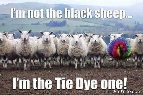 💩👌 So who is the black sheep in your family? 💩👌