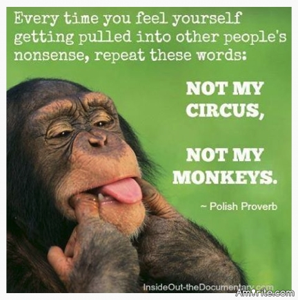 Every time you feel yourself getting pulled into other people's nonsense, repeat these words: NOT MY CIRCUS, NOT MY MONKEYS. :-)