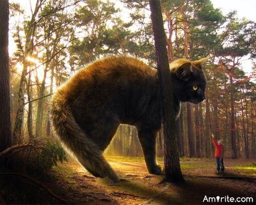 If you started shrinking ,  at what increment of size do you think the family cat wood no longer look at you as one of its owners and you become prey ?