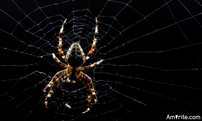 You can't put a finger on why spiders are scary they just are (or not)