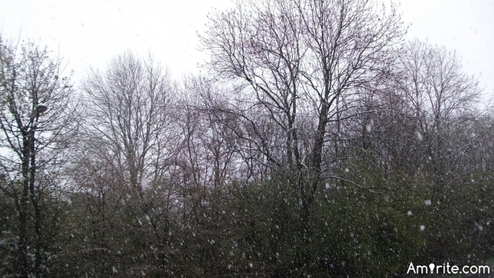 It's almost May and it's SNOWING!