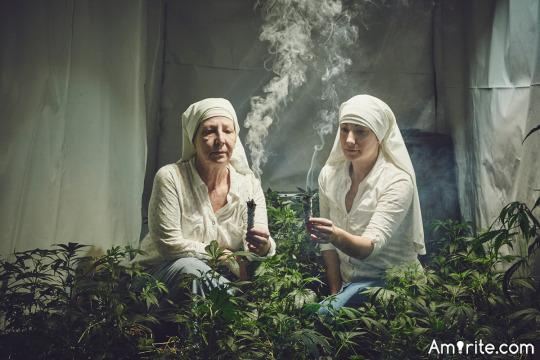 🌱 Is Cannabis any closer to being legal in your part of the world? 🌱