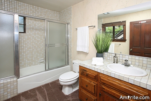 <b>A Bathtub that has been reglazed (perhaps leaving the surrounding tiles grotty) or a Bathtub that has been done by Bathfitters...(a company that will mold in a new tub and surrounding tile)....</b> <em>So...after 15 years...which one would be the best choice?</em>
