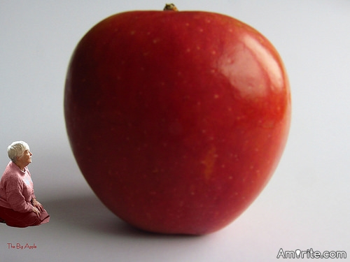 <b>Who thought up the concept of sin?</b> <em>Supposedly to do with the apple for Christians...but what about the rest of you?</em>