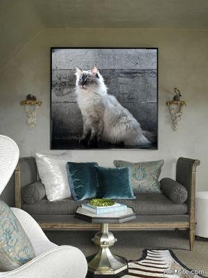 Photos of your pets in your wallet, on a small table or on the fridge are okay... but not on the living room walls. <strong>Amirite?</strong>