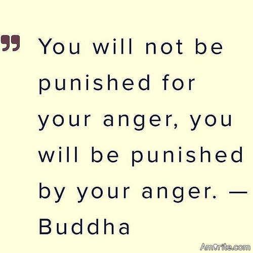 <b>Your anger only serves to self-sabotage.</b> <em>Amirite?</em>