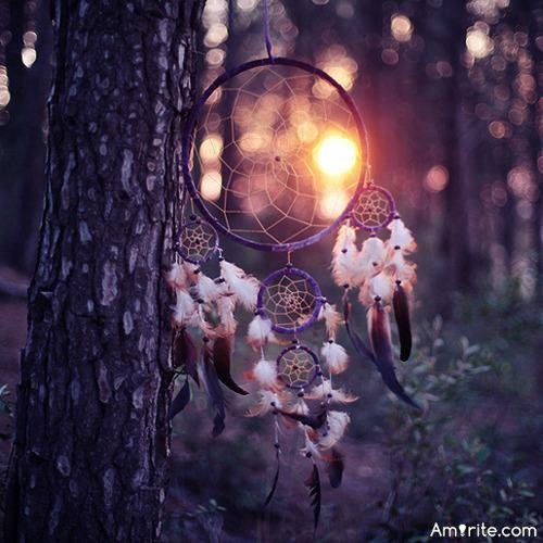 Say that you had a dream catcher that actually caught dreams. What are some of the things we would see caught in it?