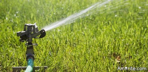 Are you a sprinkler worshipper?