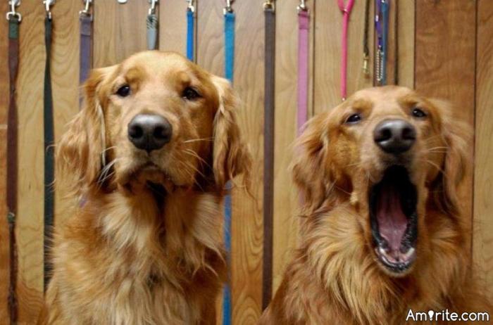 Is yawning dangerous?