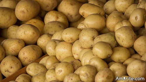 <b>If I said I was bored, mom would make me peel a bushel of potatoes.</b> <em>What might the long-term effect of that be?</em>