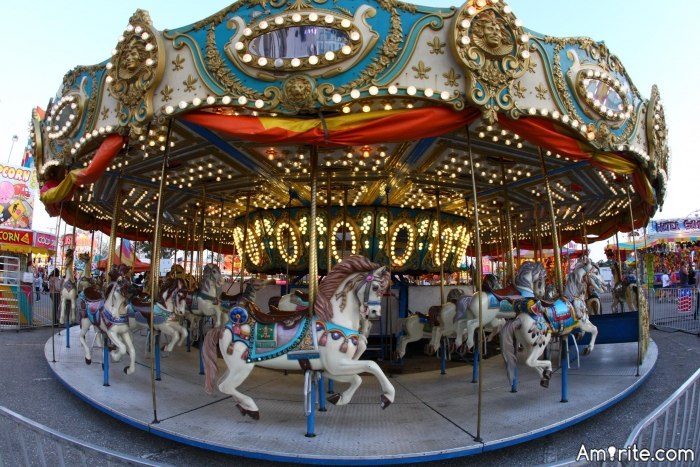 Do you enjoy carousel rides?