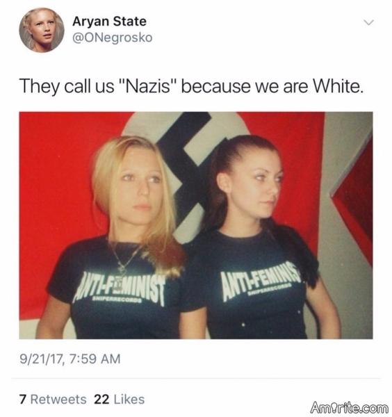 I don't know hun, maybe it has something to do with the Nazi flag right behind you?