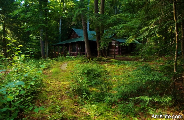 Why don't you want to live in a cabin deep in the woods?
