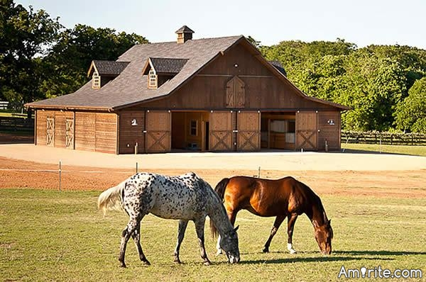 How many horses does it take to paint a barn?