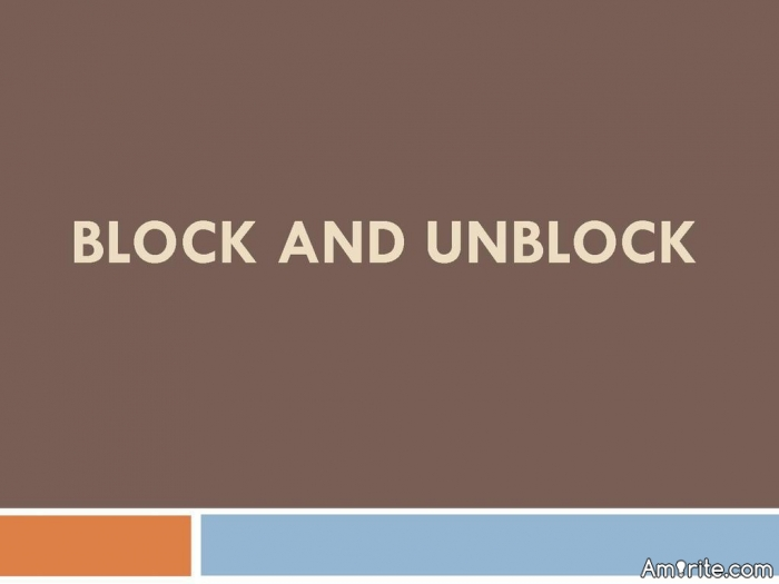 Amirite should have one block button called Permanent Block ... The game of blocking and unblocking is getting old.