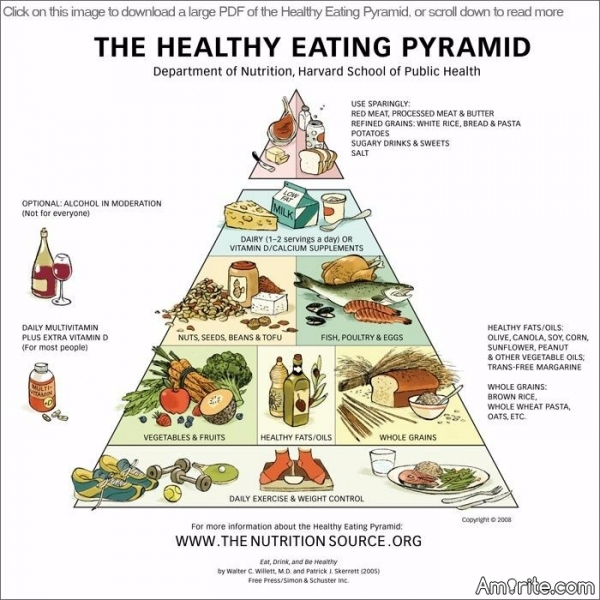 Given that human beings are always adapting is the food pyramid outdated especially with all the genetically modified food everywhere nowadays?