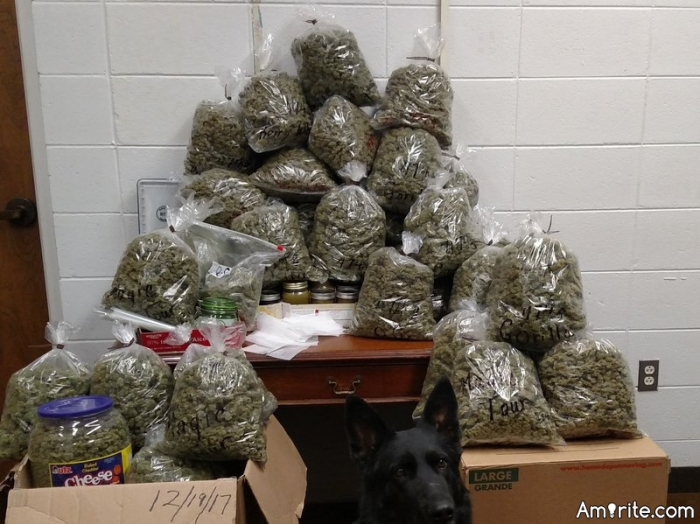 Did you hear about the elderly couple that got busted for 60 pounds of weed?