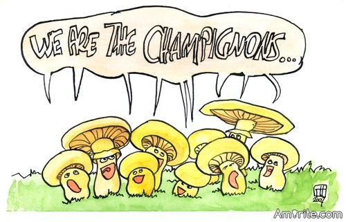 Champion or Mushroom?    <b>*     Misunderstandings and False Friends (English/French)   </b>*     I get confused over the French word for champion, le champion and the French word for mushroom, le champignon. While on a trip to France I was playing boule. I won and ended up embarrasing myself by saying 'I am the mushroom'.   ***     (Sent by: David) ... Link: http://www.bbc.co.uk/languages/yoursay/false_friends/french/i_am_the_champignonenglishfrench.shtml