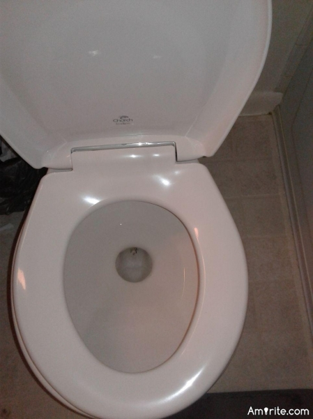 What kind of a cheapskate would install a toilet like this?