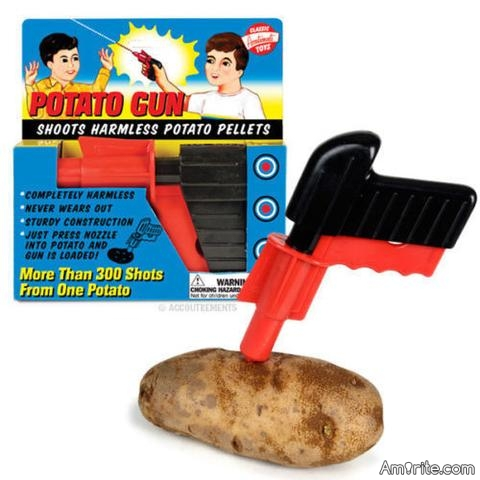 Wonder if they want to outlaw potato guns also?