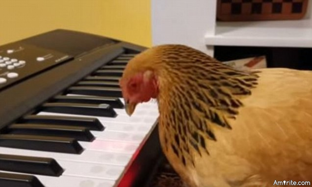 You sometimes find yourself pecking the keyboard with one hand...while the other holds a beverage.