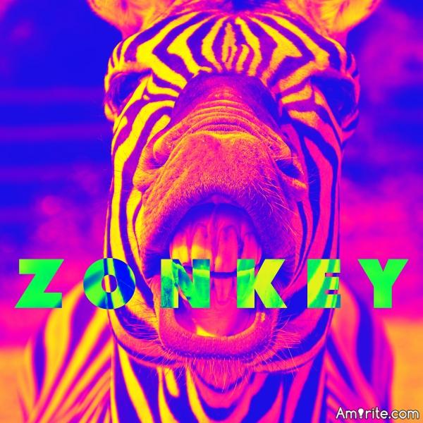 ZONKEYBALLS' BIRTHDAY TODAY!