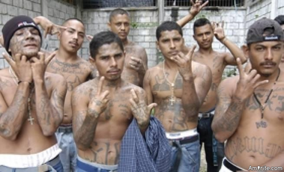 Democrats continue to woo their base for November votes. You know, those highly intelligent people with college degrees. First it was inner city African Americans. Now it's MS-13.