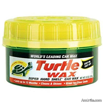 Using live turtles to wax your car with is not really that ethical.