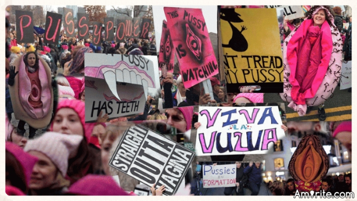 """Where have all the """"Pink P*ssy Hat"""" protesters  gone?"""